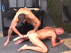 Gay Bareback Aaron & Dusty