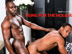 Hung for the Holidays mature gay
