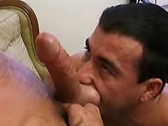 Gay swingers suck and fuck on sofas