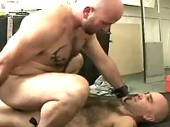 Mature gay fucks in doggy style and rides cock